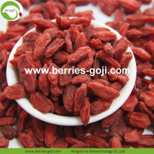 Fábrica al por mayor Super Food Nutrition Ningxia Goji Berries