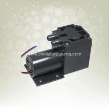 Brush micro air pump