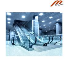 Hohe Sicherheits-Rolltreppe mit Geländer Illumination