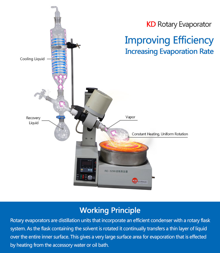Laboratory High Vacuum Degree Rotary Evaporator