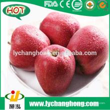 [HOT] Huaniu Apfel / frischen Huaniu Apfel
