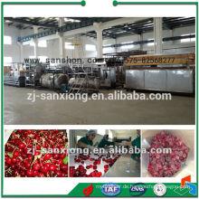 Fluidisierte Obst- und Gemüse-IQF-Maschine