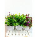 2015 lifelike mini platic grass artificial plant bonsai for home decor