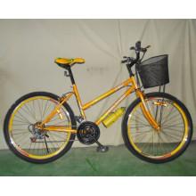 Gute Qualität 18sp Mountainbike Frau Fahrrad (FP-LDB-028)