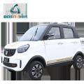 Mini electric cars loading 4 passengers