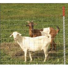 Хорошее качество Забор пастбищ и овец