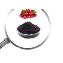Cranberry Extract powder PAC 5% 10%