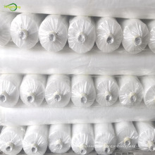 transparent plastic greenhouse film
