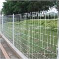 Anping производитель экспорт высокое качество field fence