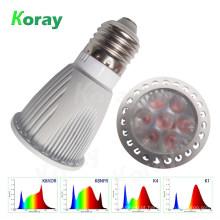Full Spectrum 5 Watt LED cresce a luz para suculentas