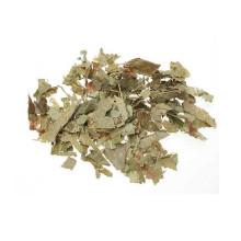 epimedium sagittatum extracto té