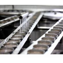 Linha de processamento de peixes de atum 225g máquina de fabricação de peixes