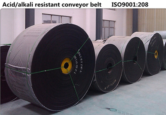 Acid alkali resistant conveyor belt