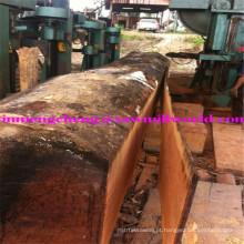 A faixa automática do corte do registro da serra de madeira do CNC viu a máquina