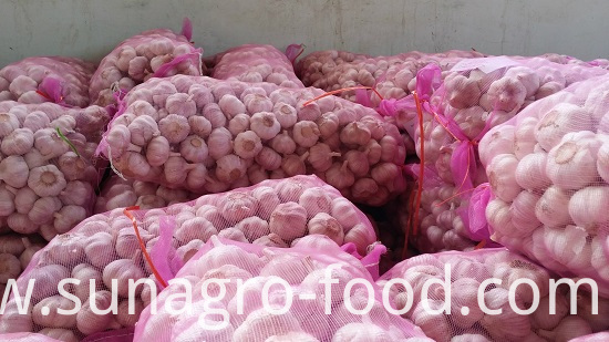 The bags of garlic