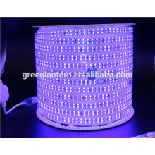 La tira llevada flexible de 220V 110V 180led / m IP67 2835 llevó la luz de tira con buen precio