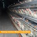 Tianfui diseño de alta calidad maquinaria avícola utilizada en gallinero