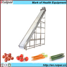 Screw Conveyor/Transfer Machine for Fruits