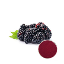 Factory Price High Quality Black berry Fruit Juice Powder