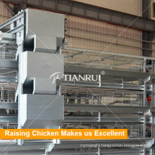 Qingdao Farming port Broiler Chicken Poultry Feeder