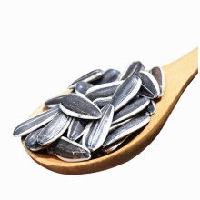 sunflower seeds with white stripe hot sale