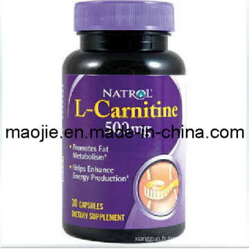 Natrol L-Carnitine Fat Burning poids perte minceur Capsule (MJ - 500 mg * 30caps)