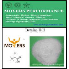 Suplemento de la venta caliente de la betaína HCl de la nutrición