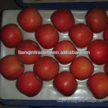 Поставщик высококачественных яблок