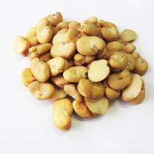 Hot Sale Peeled Broad Beans In Qinhai Fave Beans Origin  China Wholesale