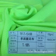 2013 100%Polyester Weft Knitting Jersey Fabric (TF-T-13-58)