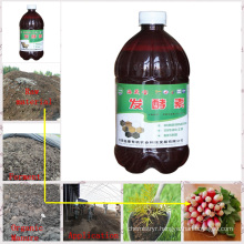 Seaweed Microbial Organic Inoculant for Bacterial Manure
