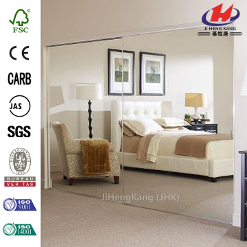 Starfire Frosted Glass Partition Panel Interior Door