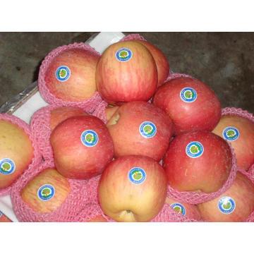 Sweet Fresh Fiji Apples