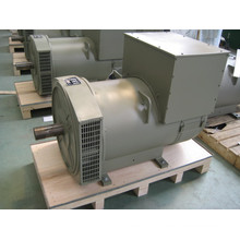 260 Kw Three Phase Brushless Alternator (JDG314ES)