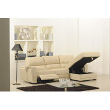Living Room Genuine Leather Sofa (875)