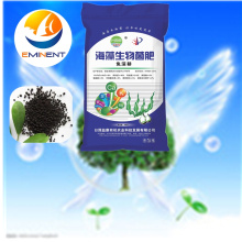 Bio Organic Fertilizer from Seaweed Extract (Base Fertilizer)