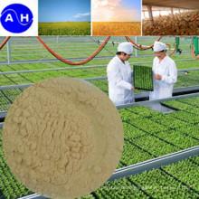 Biological Enzymolysis Amino Acid Compound