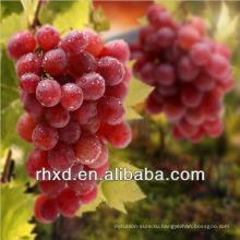 Свежий красный виноград/Китай hongti винограда