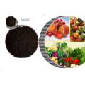 Planta de fertilizantes base con extracto de algas marinas para alimentos verdes