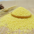 New Crop Hulled Yellow Millet With Good Manufacturer