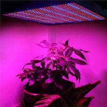 120W LED Grow Light Hydroponics Plants Éclairage AC85 ~ 265V