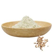 Экстракт конопли, веганский протеин, протеин из семян конопли