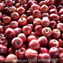 20kg Упаковка коробки Свежий красный Delicious Apple