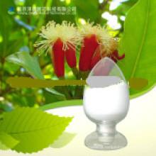 Natural e saudável Coumarin popular, pó CAS: 91-64-5;