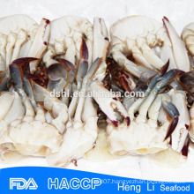 Delicious Hot sale sea crab