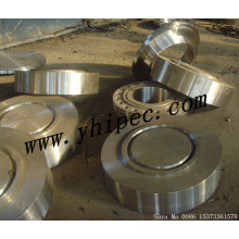 Blind Ring Type Joint Flange