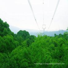 Tour de transmission de puissance en acier à angle linéaire 220kv (en forme de hibou)