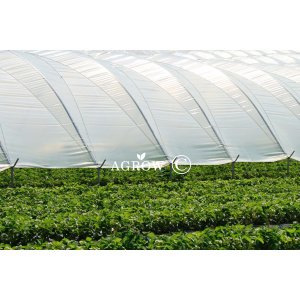 HDPE Greenhouse Tarpaulin Film