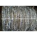 Bwg16 Single Electric Galvanzied Barbed Wire (Anping Factory)