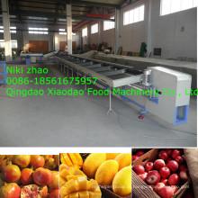 Apple, manga, laranja, máquina de classificação / máquina de classificação